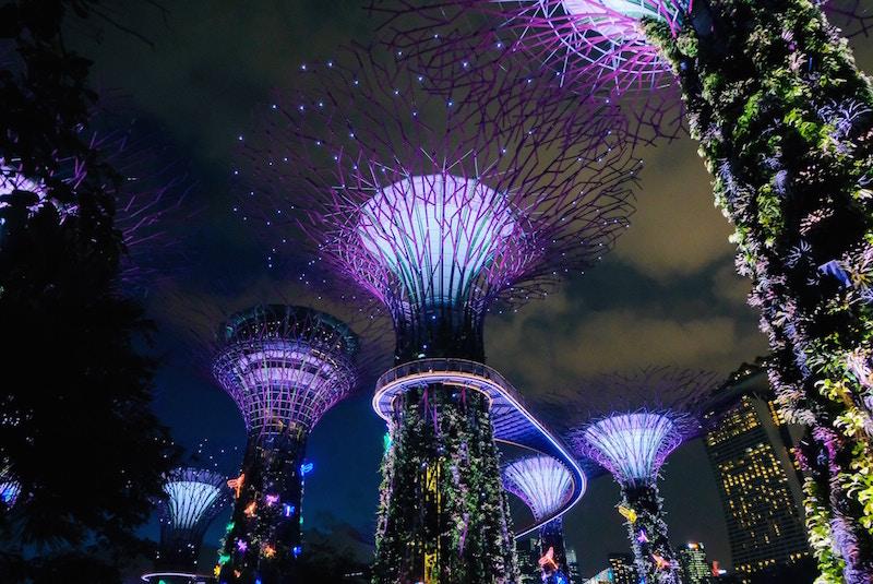 singapore garden bay