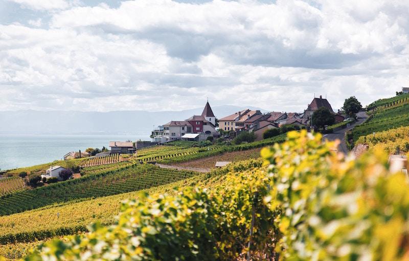 swiss fields and village