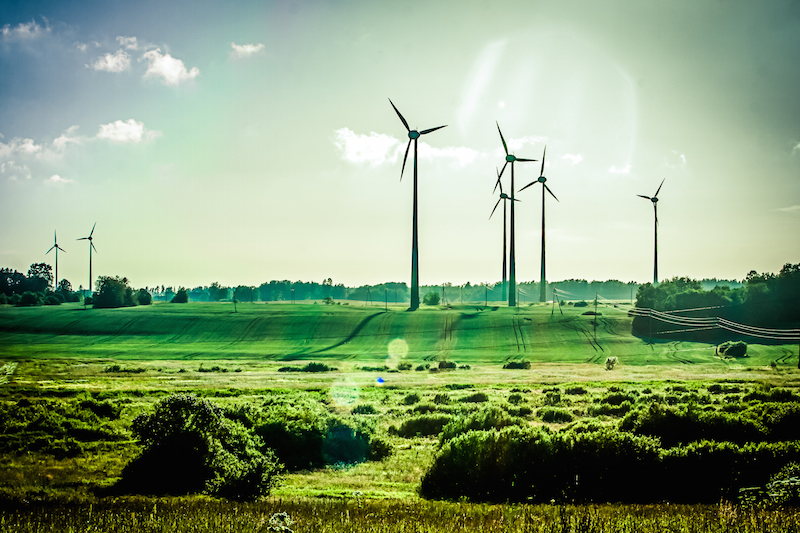 Leading the World to a Sustainable Future: Top Green EU Countries